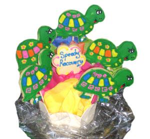 Turtlecookies8907